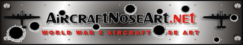 aircraft noseart metal air force bomber panel